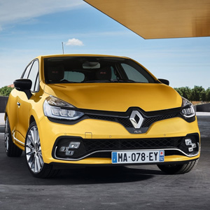 Renault Clio Rs Touch Up Paint | Color N Drive